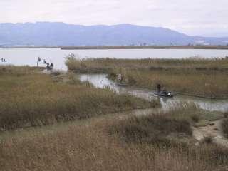 South Ebro Delta Tour: La Encanyissada, La Tancada, La Punta de la Banya