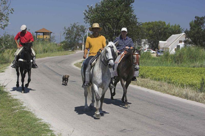 Itineraire a cheval  dans le Delta de l'Ebre ou les ports de Beseit